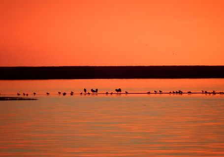 the ria formosa sunset
